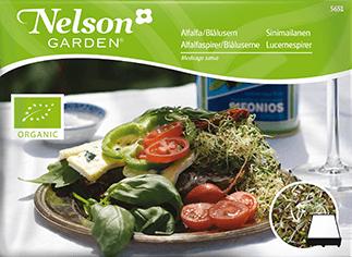 Groddar Alfalfa, Organic