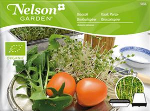 Groddar Broccoli, Organic