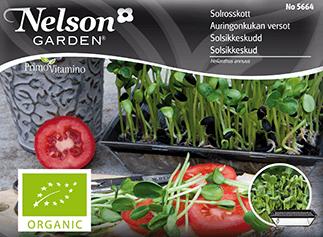 Groddar Solrosskott, Organic