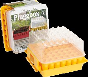 PlantStart Pluggbox Mustard