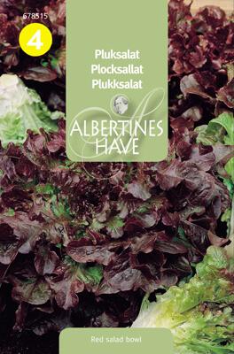 Plocksallat Red Salad Bowl, Ekologisk Frö & fröer