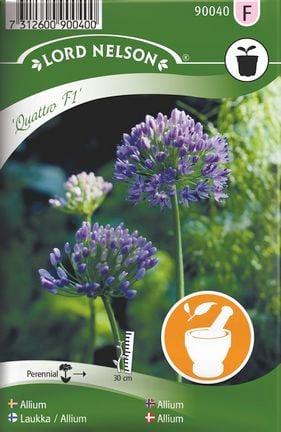 Allium, Quattro F1 frö