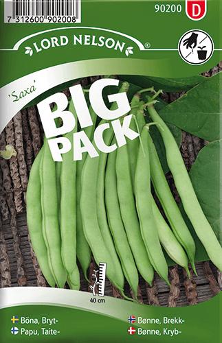 Brytböna, Saxa, Big Pack frö