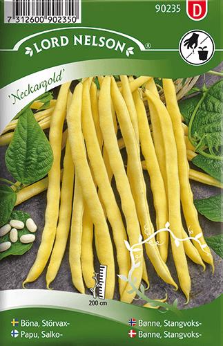 Störvaxböna, Neckargold frö