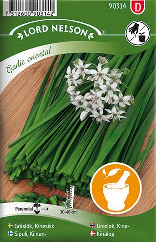 Gräslök, Kinesisk, Garlic oriental frö