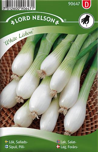 Salladslök, White Lisbon frö