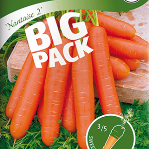Morot, Sommar-, Nantaise 2, Big Pack frö