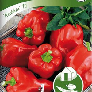 Paprika, Kruk-, Redskin F1, röd frö