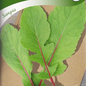 Rädisa, Blad-, Sangria frö