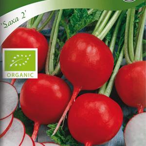 Rädisa, Saxa 2, rund, Organic frö