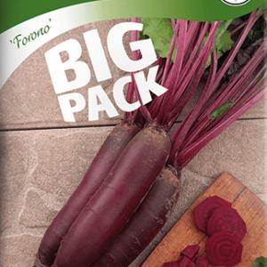 Rödbeta, Forono, avlång, Big Pack frö