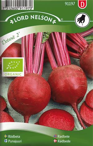 Rödbeta, Detroit 2, rund, Organic