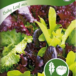 Sallat, Baby Leaf, mix frö
