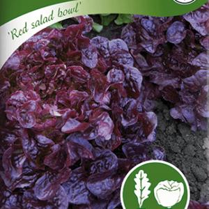 Plocksallat, Red salad bowl, röd frö