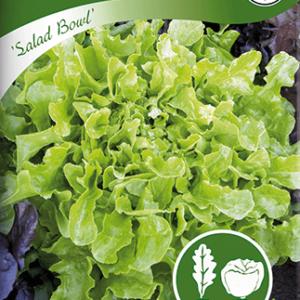 Plocksallat, Salad Bowl, grön frö