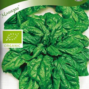 Spenat, Monnopa, Organic frö