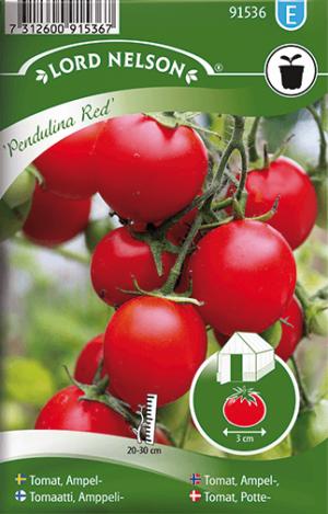 Ampeltomat, Pendulina Red frö