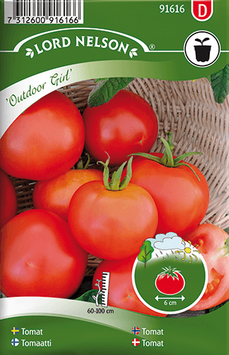 Tomat, Busk-, Outdoor Girl frö