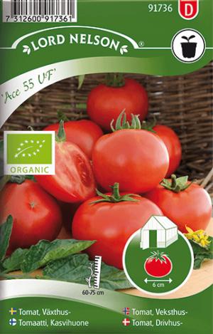 Tomat, Växthus-, Ace 55 VF, Organic