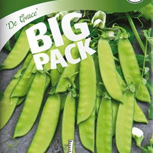 Sockerärtor, De Grace, låg, Big Pack frö