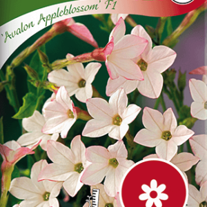 Blomstertobak, Avalon Appleblossom F1 frö