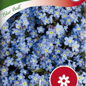 Förgätmigej, Blue Ball, blå frö