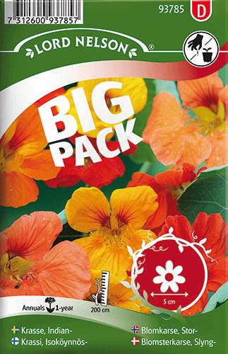 Slingerkrasse, bl färger Big Pack frö