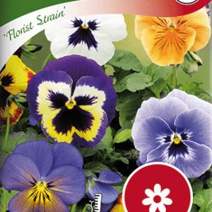 Pensé, Florist Strain, storbl. bl färger frö