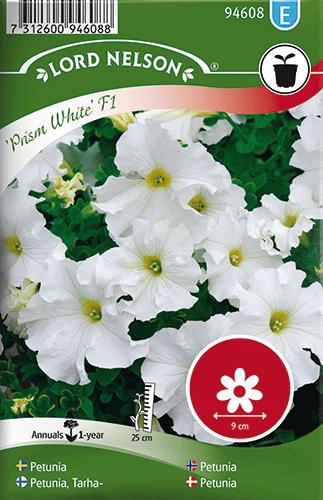 Petunia, Prism White F1, storbl. frö