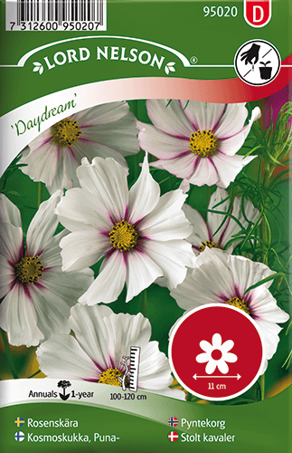Rosenskära, Daydream frö