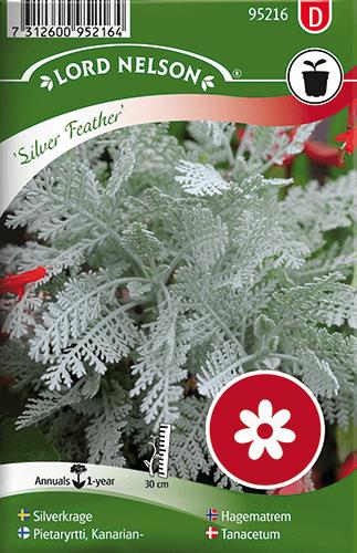 Silverkrage, Silver Feather frö