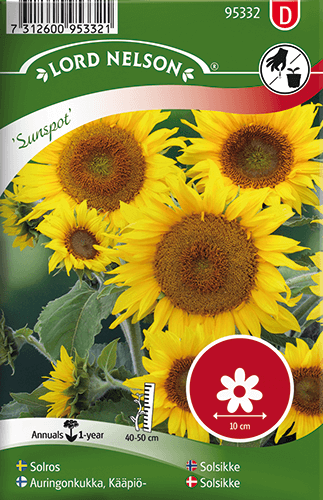 Solros, Sunspot, låg frö