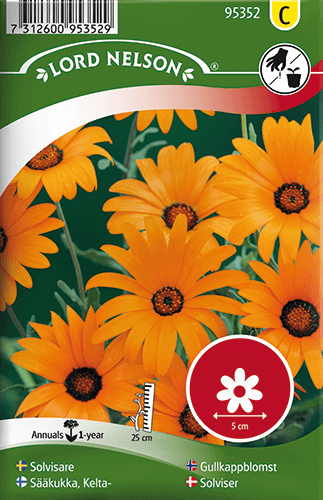 Solvisare, Orange nyanser frö