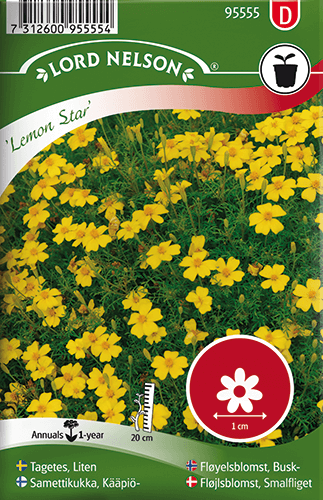 Tagetes, Liten,  Lemon Star frö