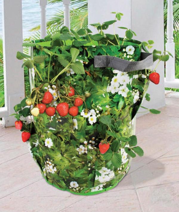Odlingssäck för jordgubbar/örter