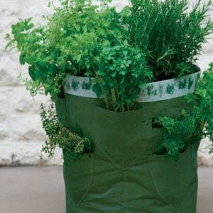 Planteringsbehållare kryddor/jordgubbar 2 pack