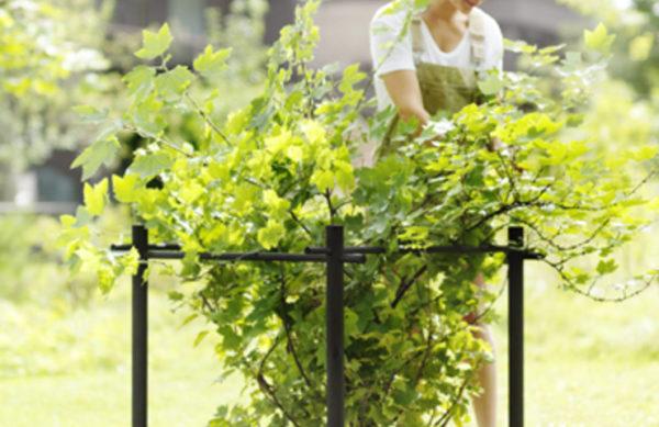 Hasselfors Garden Stöd För Bärbuskar